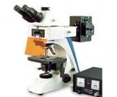 Микроскоп флуоресцентный XJF300