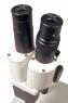 Микроскоп Levenhuk 2ST